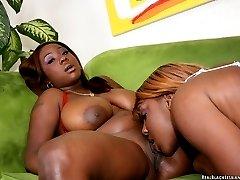 Babes rub their big black tits together