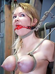 Rain DeGrey told me everyone has their specific style of rope. She said mine was, and I quote,