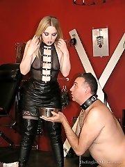 Humiliated Dog Slave