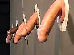 Cockpride homos