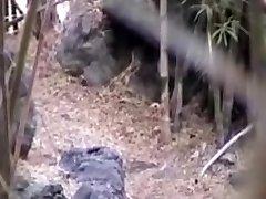 cazzo nella foresta
