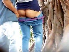 Melayu nekaj glavnih kt hutan