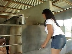 Riding Asian bone in the stables