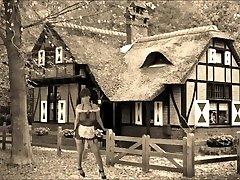 videoclip - în felul meu - vintage
