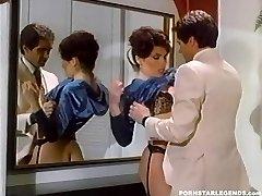 Huge-chested Janey Robbins being boinked in bathroom