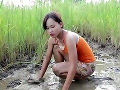 vy fischen, kambodscha