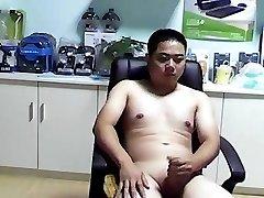 chinês urso menina jerkoff gozada