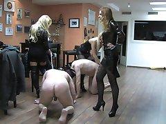 3 misttresses having fun