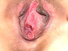 Masturbira Vezani Kosmat Azijskih Muca