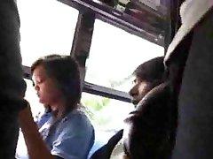 dotykowy xx35 spójrz na mnie, autobus
