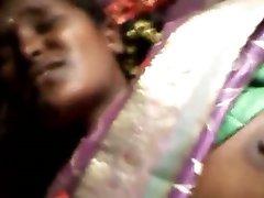 Bengalski Boudi 2