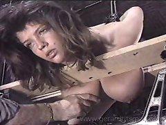 إيزابيل يحصل لها الدهون الثدي للتعذيب