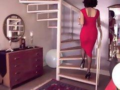 clasic ciorapi de dama lady balului
