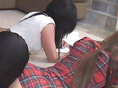 Het Doen Van Hun Huiswerk