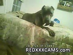 גלוריה גונזאלס גררו 2 - redxxxcams.com
