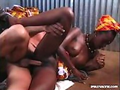 Ebony Beauty Bagheera Je v Prdeli Pevný Bílý Kohout