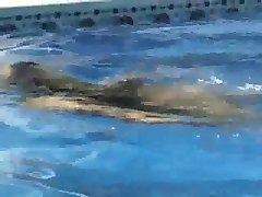 Meisje Sex in het Zwembad