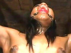 Bdsm-Filer 024 bondage bdsm slave femdom dominans