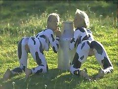 Улыбаясь Коров
