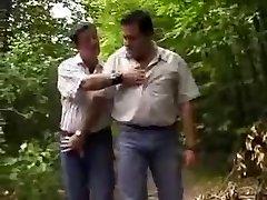 Chubby αρκούδες στο δάσος