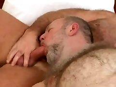 Bjørn lubne handling