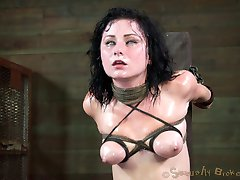 Veruca James is one of the best cock suckers in the world. She has no trouble deep throating all 10 inches of jackhammer. Or at least she wouldn't if she wasn't strapped down to the most powerful vibrator money can buy. Her skills are put to the test as the sybian tears orgasm after orgasm, each one more intense than the last, from her quivering body.