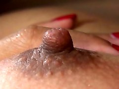 Asian hooter plow is arousing