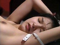 japanese antique porn2