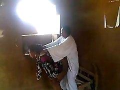 Súdánské domácí