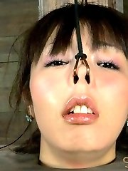 We take 1 cute girl-next-door, 1 horny milf and 1 innocent beauty from the Far East, and give them the most brutal bound fucking imaginable.