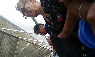 Abuelita en Municipalidad Pueblo Libre - 1