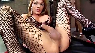 Magnificent Tgirl searing solo
