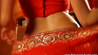 Bollywood Queen Of Erotic Dance Sexy Cougar