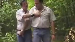Chubby medve az erdőben
