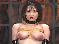 Japanese bondage sex movies.