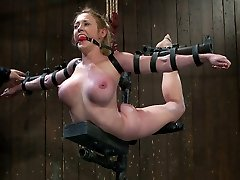 Now this is something you don't see every day, a custom iron suspension piece. This is what happens when ART hits Bondage & Discipline in the face with a creative stick. This pose in itself is torment on a super-sexy level.  The arch, the tension of the back, the helplessness of of the victim.  The huge breasts unsheathed, nips popping out and tightening, clamped and weighted.  Her feet are unveiled to caning and snapping.  This is agony in its most enthralling form.  No hope for pleasure, just a slow bearing...
