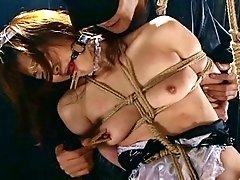 Japanese sluts whipped!