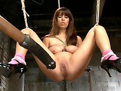 Nina Lopez brings a giant set of natural guns to HogTied, and come to find out her pussy is Fucking Beautiful! Especially when the ropes are ripping her pretty pink cunt lips apart to reveal that big, fat, pulsing pink clit. I can resist vibrating the shot out of that fresh young twat, and she rewards me by squirting her girl come all over my fucking pants.