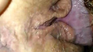 Hubby with beard eating wifes sweet slit