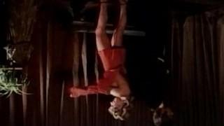 Der Tanzstunden Report (1973) aka College for Swingers pt Three