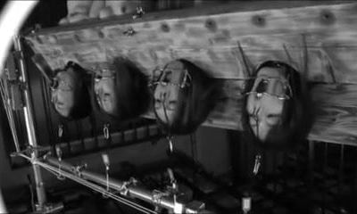 Four Little Piggies