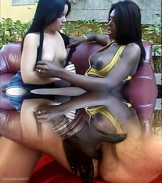 Horny latina rails tgirl's big dick