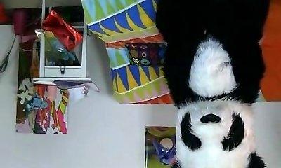 Panda bear in sex fucktoy porn movie